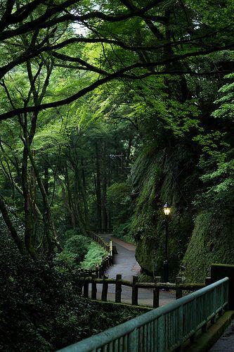 Minoo Park, Osaka, Japan