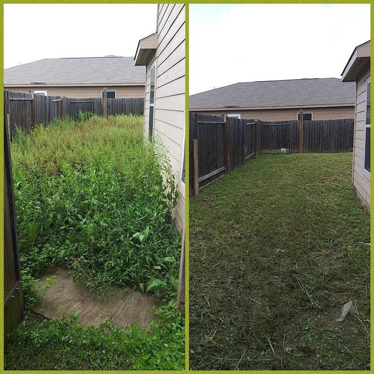 Davis Lawncare Plus Lawn Care Service in SAN ANTONIO