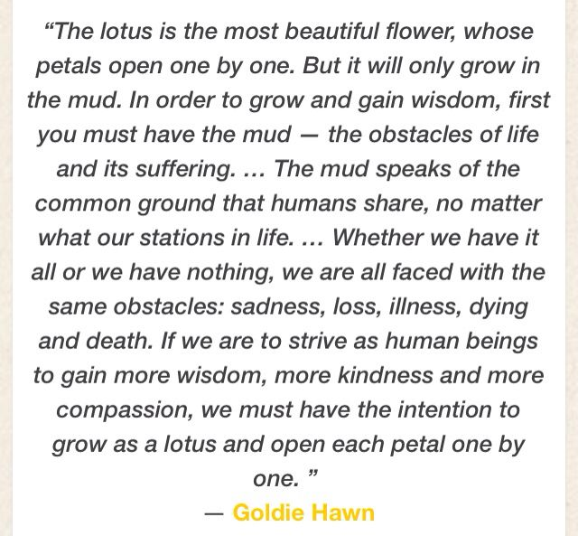Goldie Hawn Quote In Lotus Flowers Lotus Flowers Meant To Be