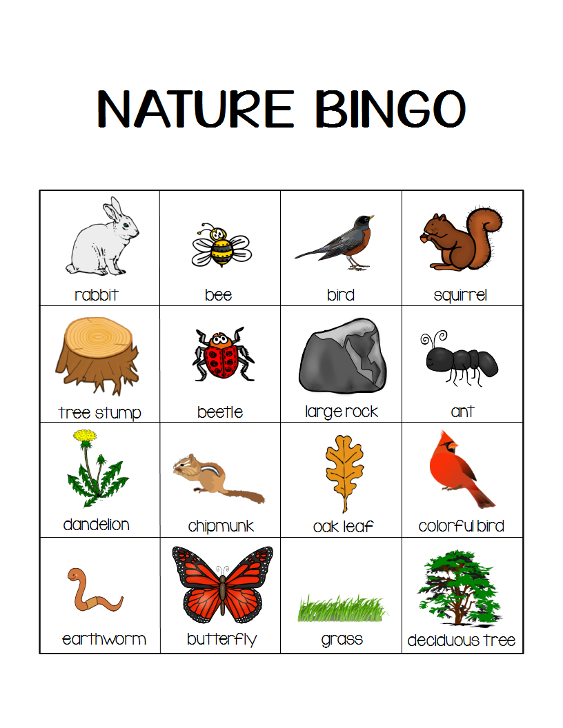 Nature Bingo Printable Activity Take a Hike with your