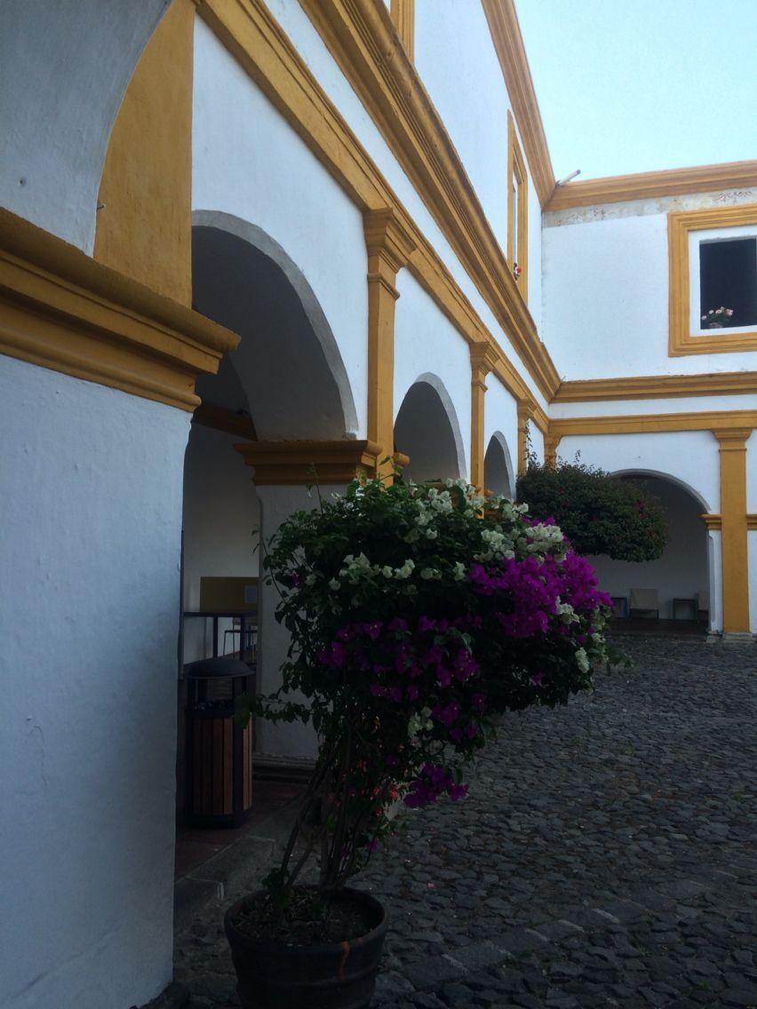 Convento de la compañía de Jesus antigua Guatemala