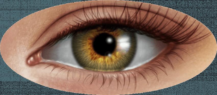 Blue Eyes Lense Png Editing Transparent Image Full Hd Image Free Dowwnload Png Image Hd Images