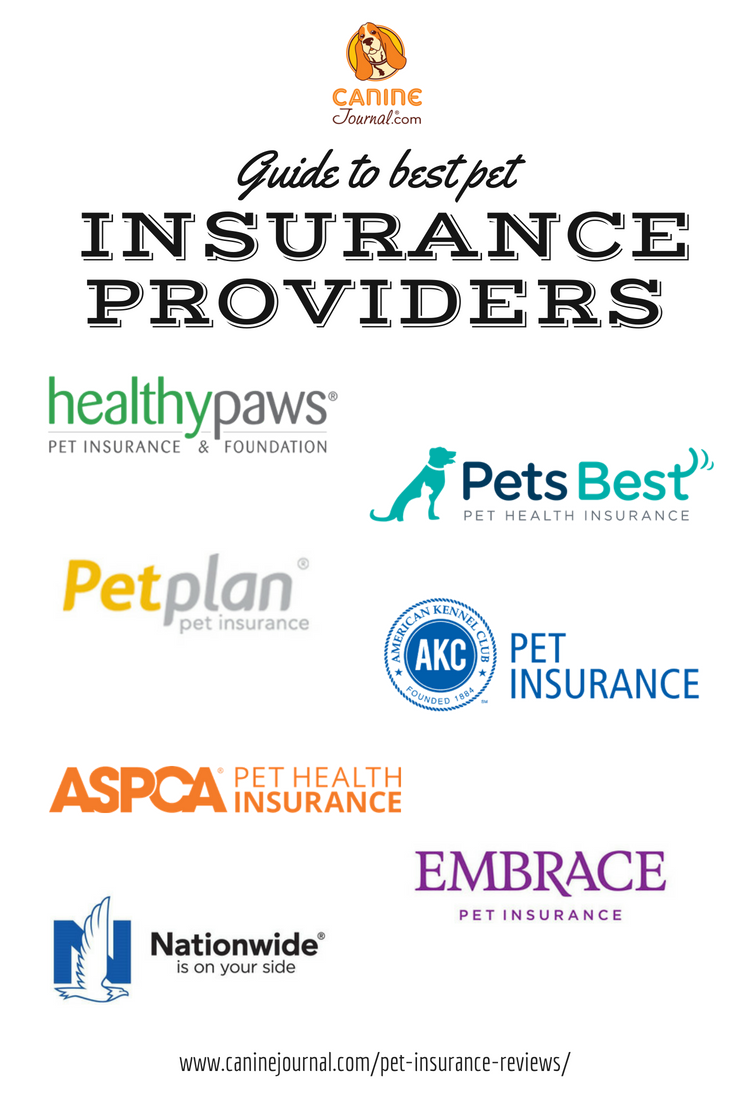 Pet Insurance Reviews 2020 Cost Coverage Comparisons Pet Insurance Reviews Pet Health Insurance Pet Health