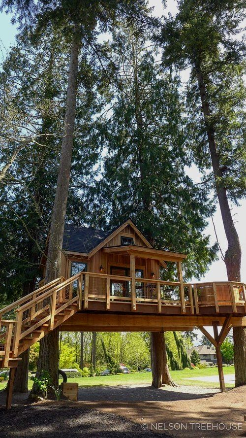 Best Tree House Designs Tree House Designs Cool Tree Houses Tree House Plans