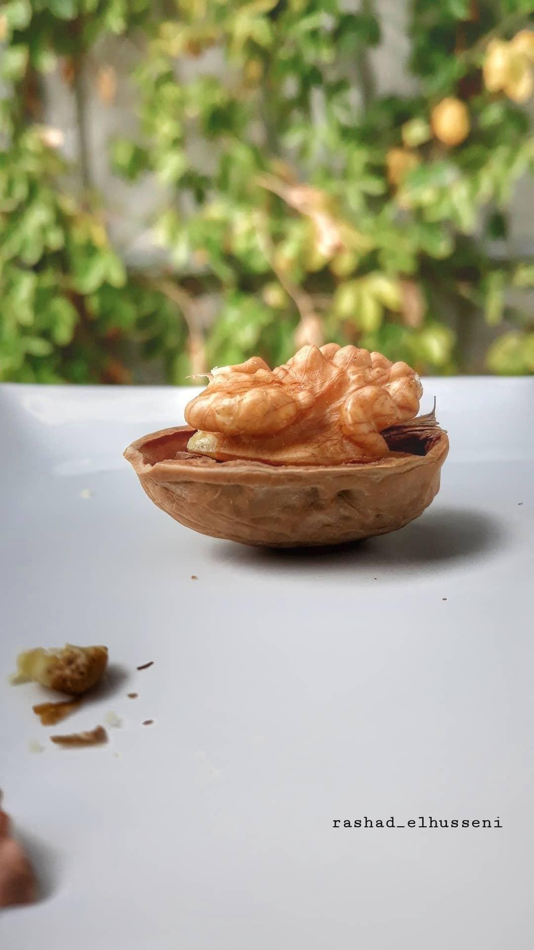 طبخ طعام اكل شواية طبخي مطبخ طبيخ كبسة رز هندي بخاري مندي حلا كيك كعكة طباخ مطبخي