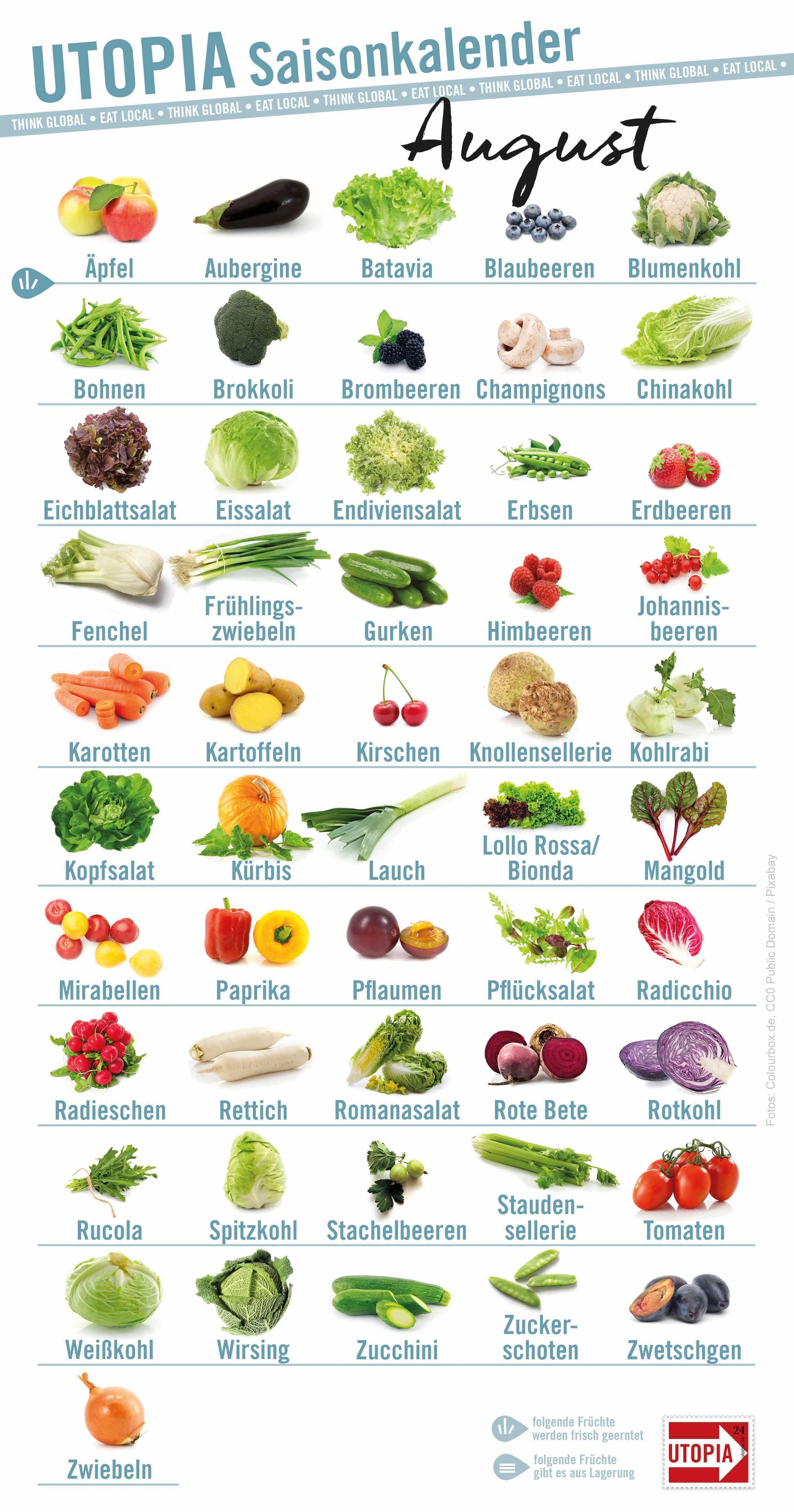 Saisonkalender Dieses Regionale Obst Und Gemüse Gibt S Im