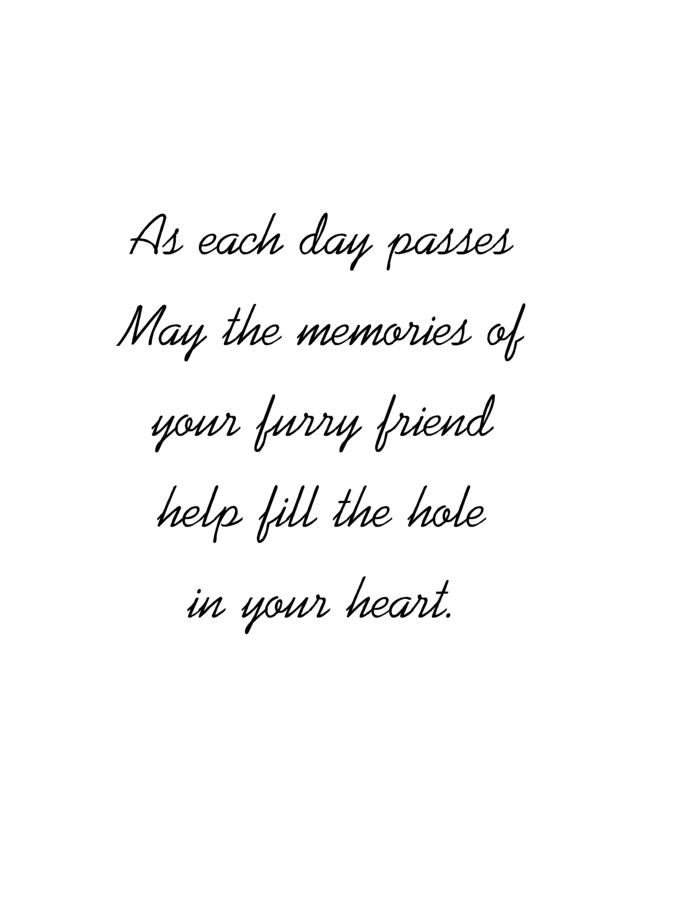 Pet Loss Sympathy Expressions Animals Pinterest Pet loss - funeral words for cards