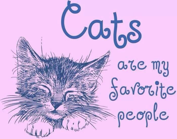 Cats are my favorite people.
