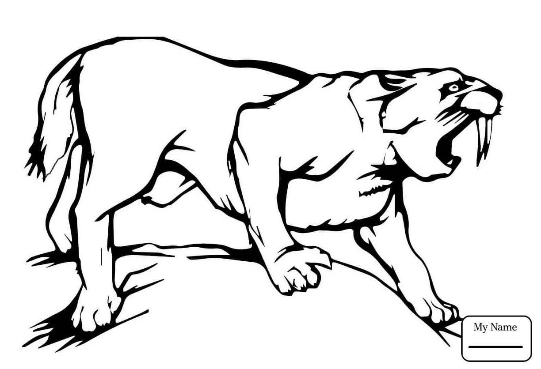 Saber Tooth Tiger Coloring Pages To Print Dengan Gambar