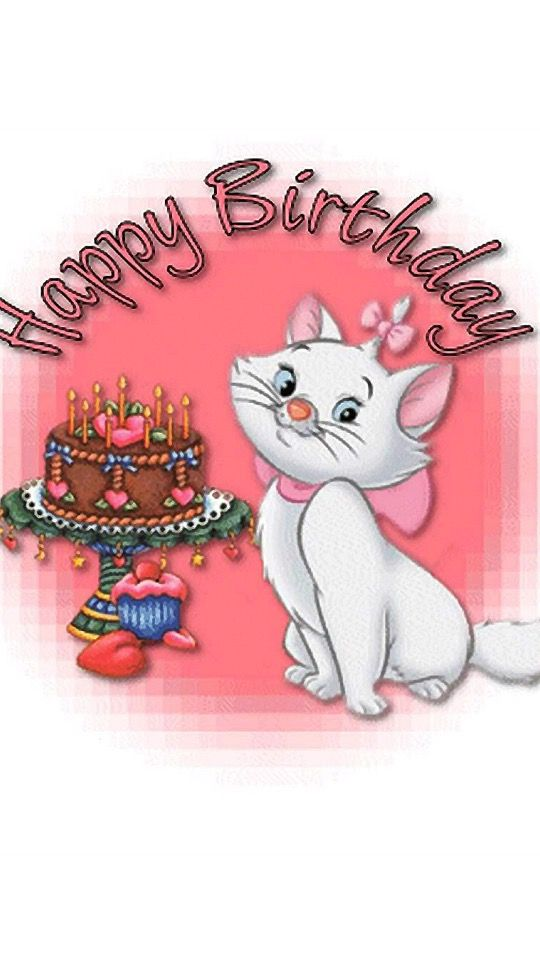 Happy Birthday For Facebook Kitten Cat Images