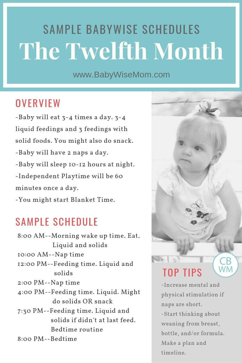Babywise Sample Schedules The Twelfth Month Babywise Mom Babywise Schedule Baby Schedule Baby Wise