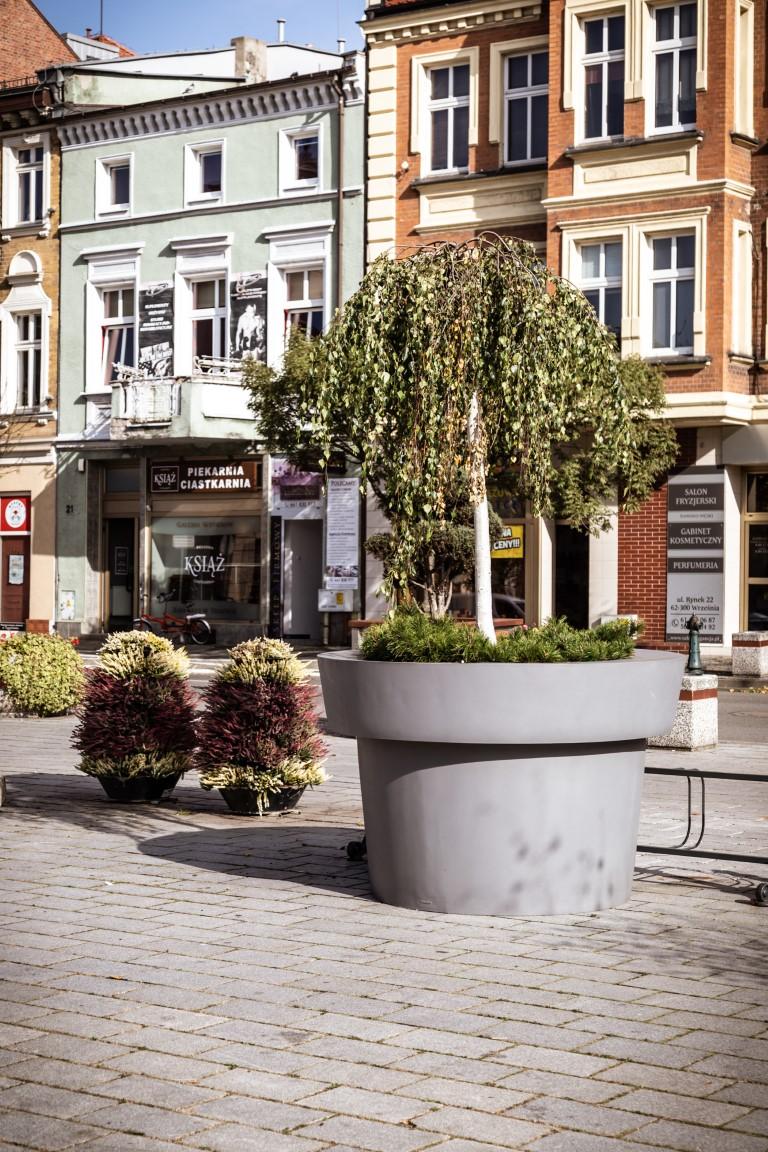 Wrzos Duze Donice I Nieco Traw Inspirowani Natura Plants Flower Pots Flowers