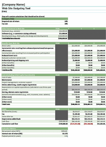 The Website Budget Template Will Help Assess The Funds Need To Start