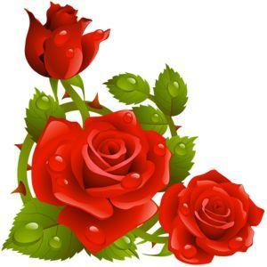 rose flower clipart png 14 jpg 300 300 rh pinterest com