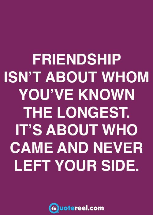 21 Quotes About Friendship   QuoteReel
