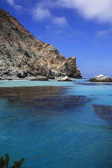 Spotlight Santa Catalina Island Visit California