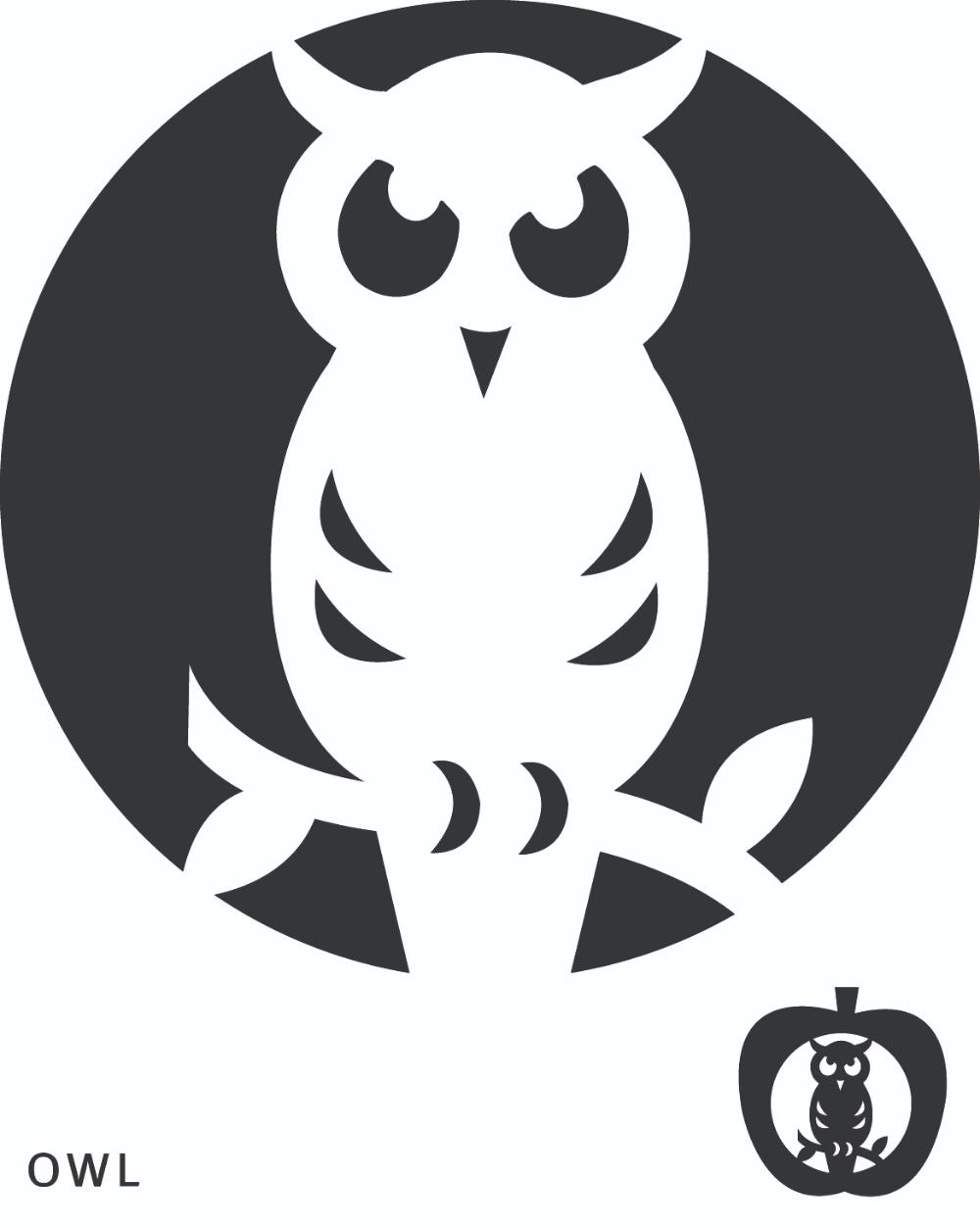 Printable Owl Pumpkin Carving Templates Owl Pumpkin Carving Pumpkin Carving Templates Owl Pumpkin