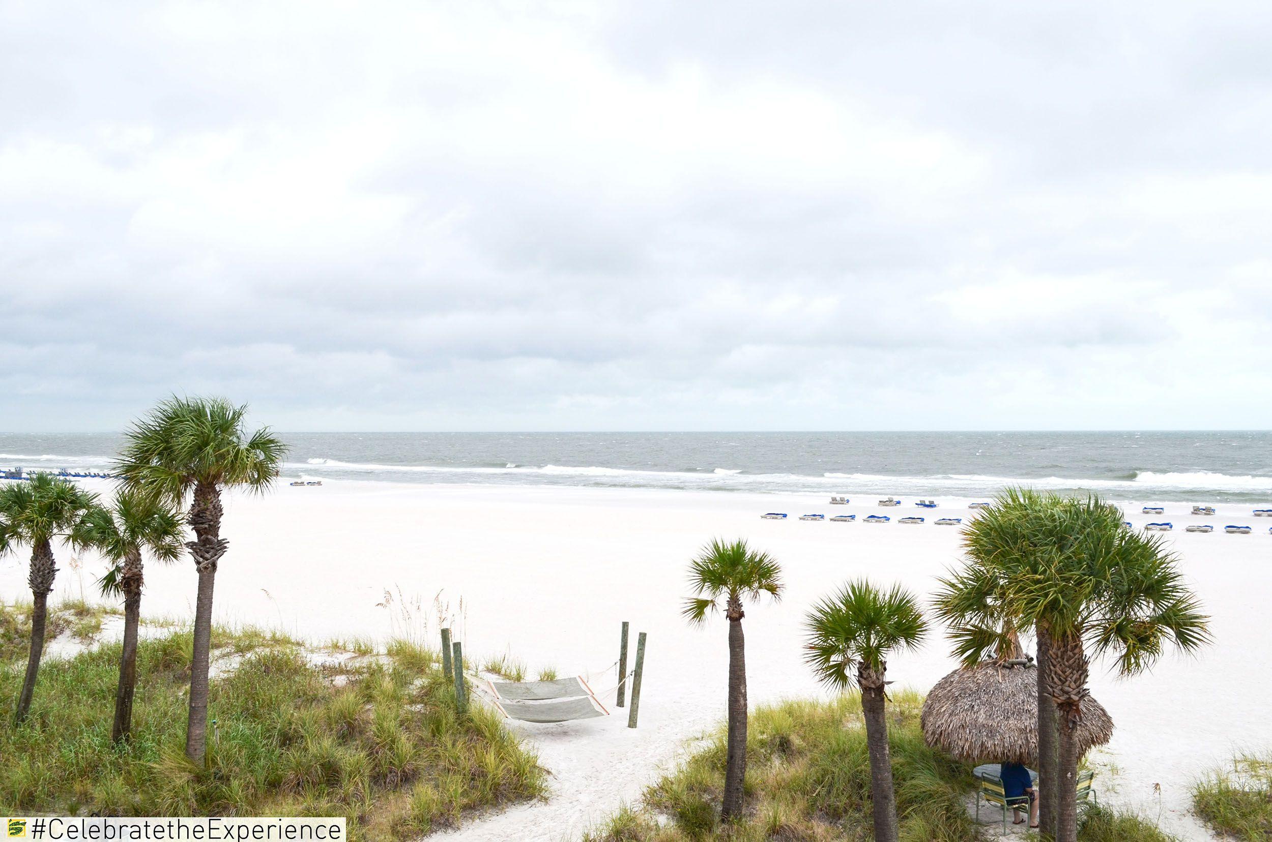 Beach Days In December Florida Fun Stpete Beach Palmtrees Sand