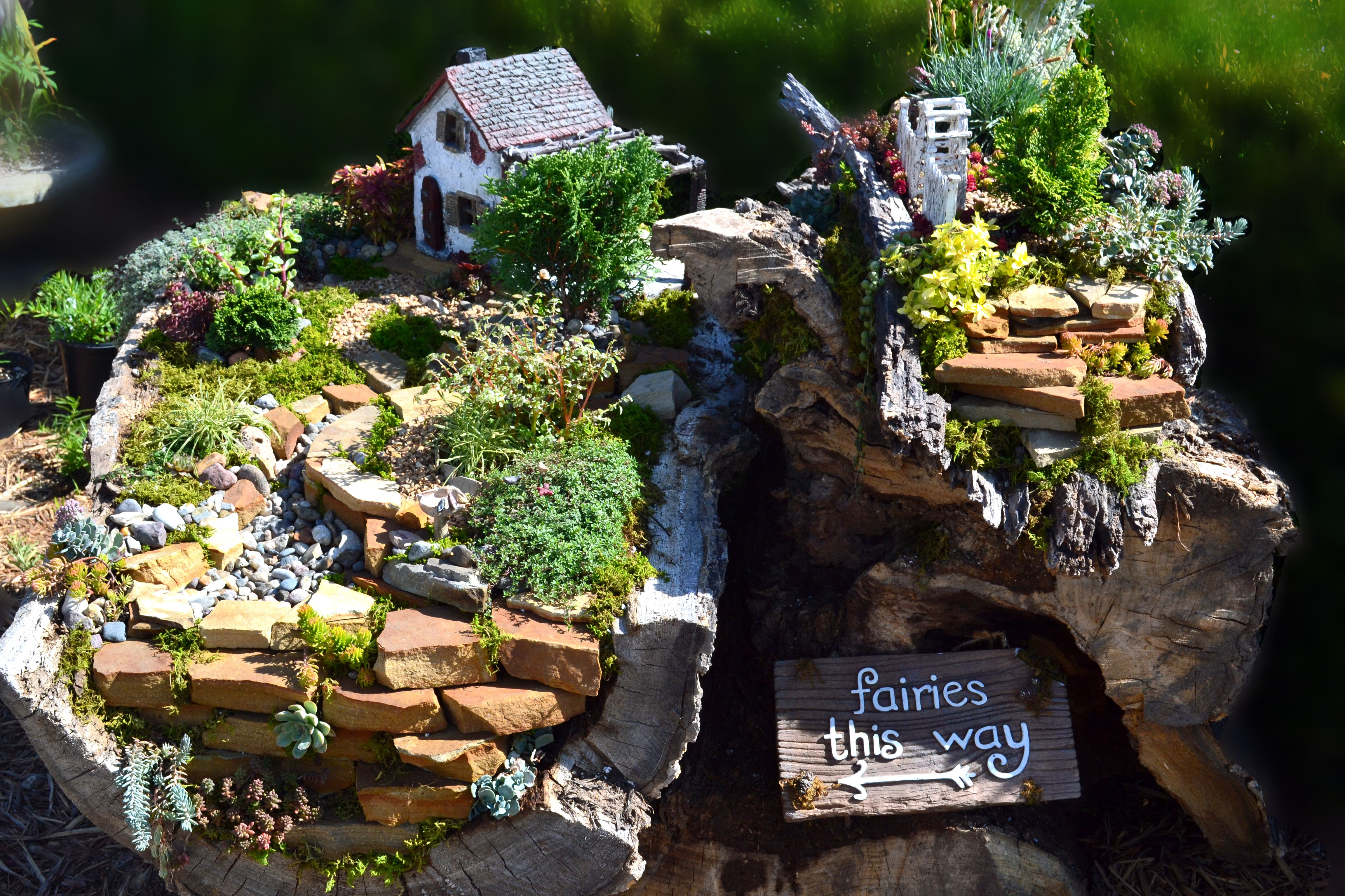Our Fairy Garden Located In Our Pollinator Garden In Blue Springs