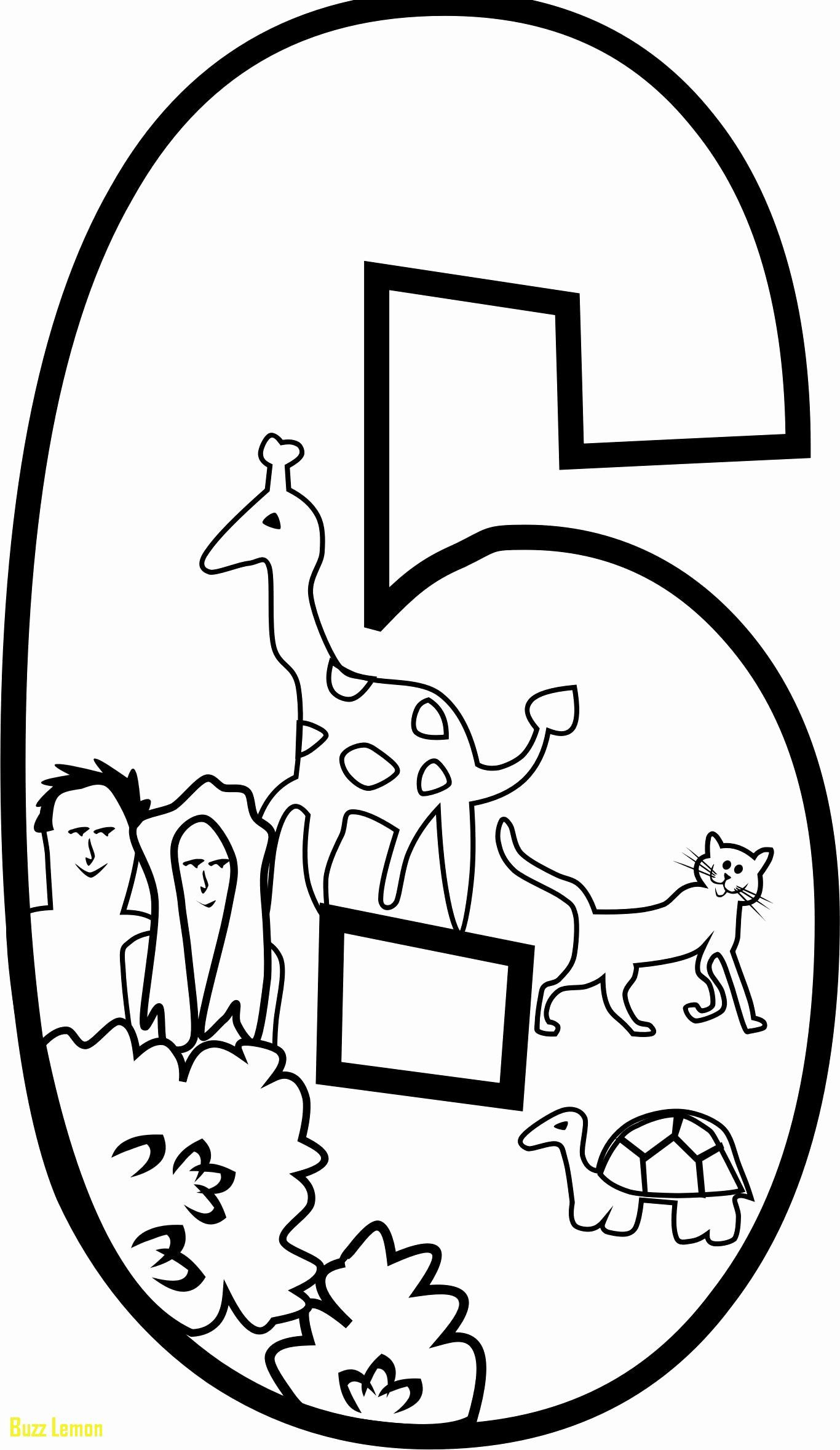 24 Days Of Creation Coloring Page In 2020 Creation Coloring