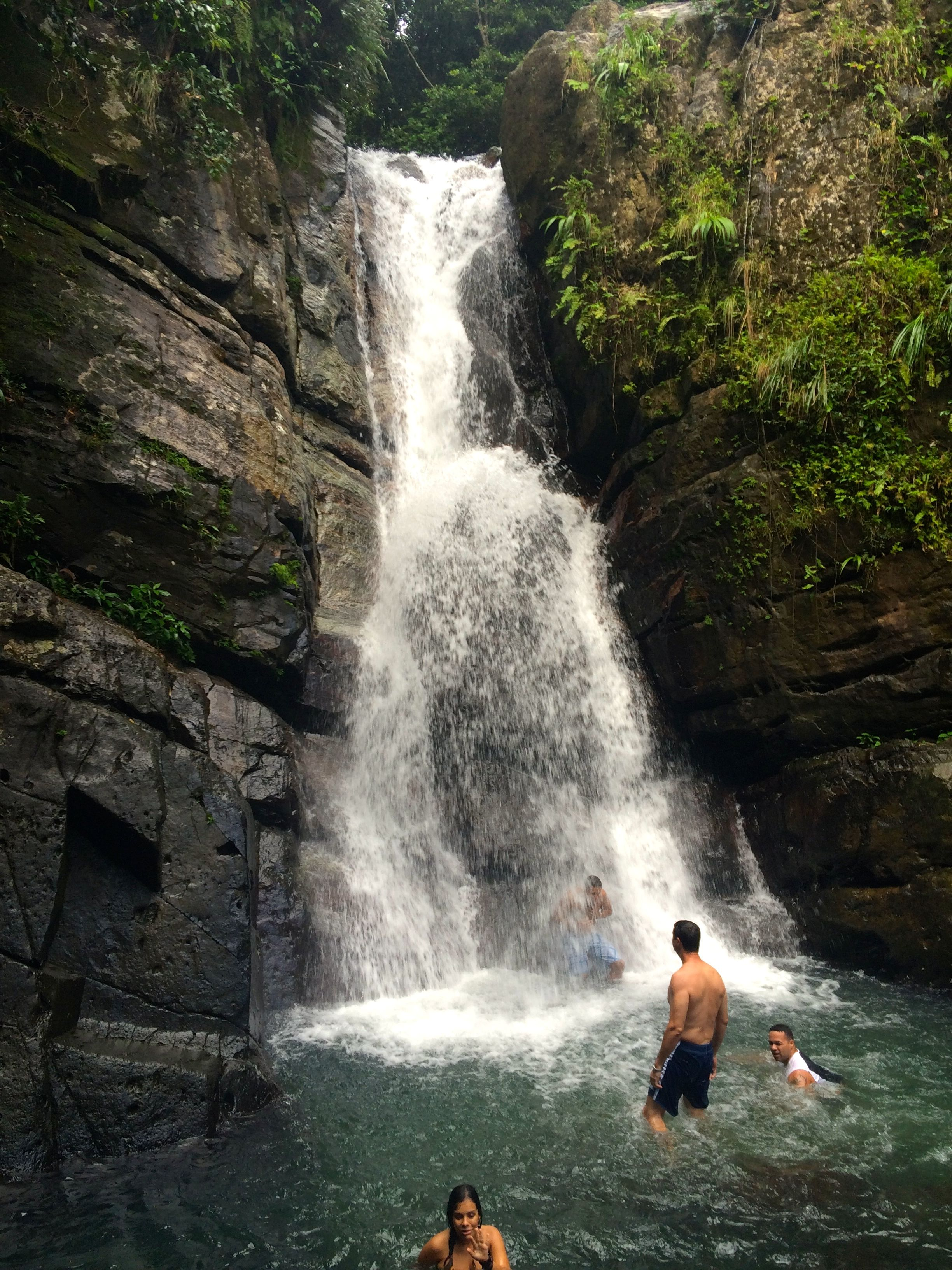 El-Yunque-Waterfall.jpg (2448×3264)