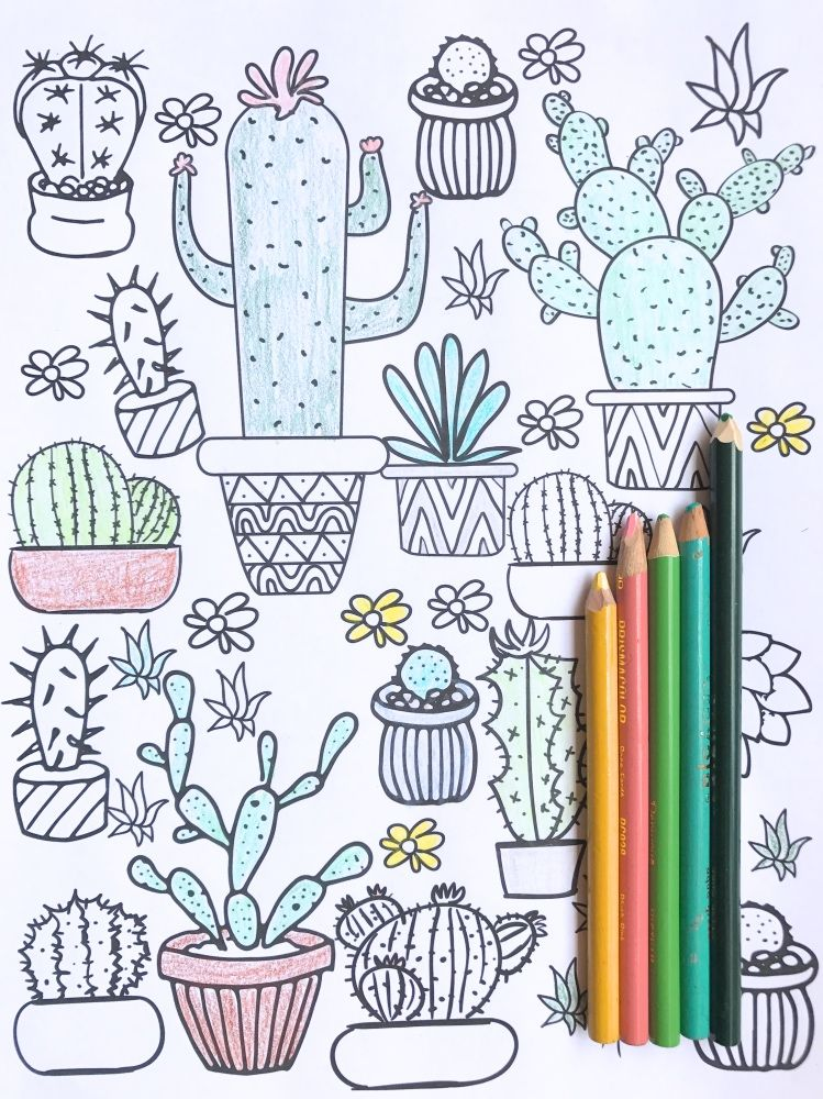 Cactus and Succulent Printable Adult Coloring Pages Cute