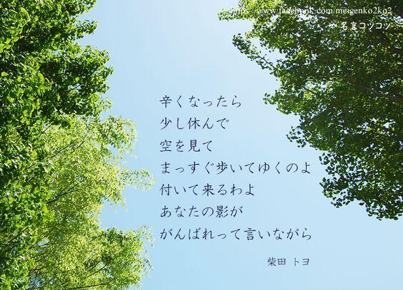 Photo of Toyo Shibata Quotations[Night Quotations Archive]