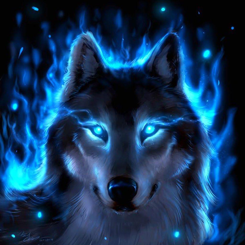 Blue Fire Wolf Blue Fire Wolf Blandine Belgeri Wolf Background
