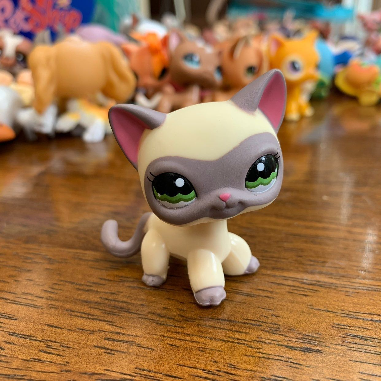 Lps Short Hair Cat Rare Great Condition Worth 55 On Amazon