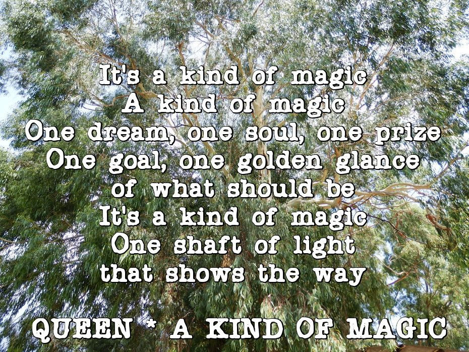 It S A Kind Of Magic A Kind Of Magic One Dream One Soul One Prize One Goal One Golden Glance Of What Should Be It S A Ki Queen Lyrics A Kind