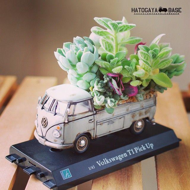 鳩ヶ谷ベース On Instagram 5 17日曜日に出店するvw Succulents Diy Succulent Garden Diy House Plants Decor