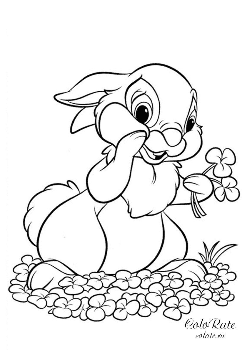 Зайчонок собирает цветы - высококачественная раскраска из ...