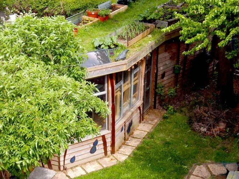 allotment roof shed eco shed from london shedoftheyear readershedscouk - Garden Ideas 2014 Uk