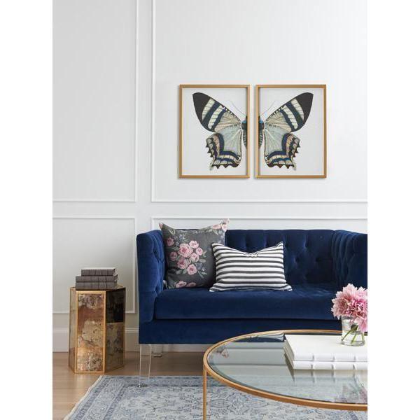 Split Butterfly Prints | Pinterest | Vintage butterfly, Butterfly ...