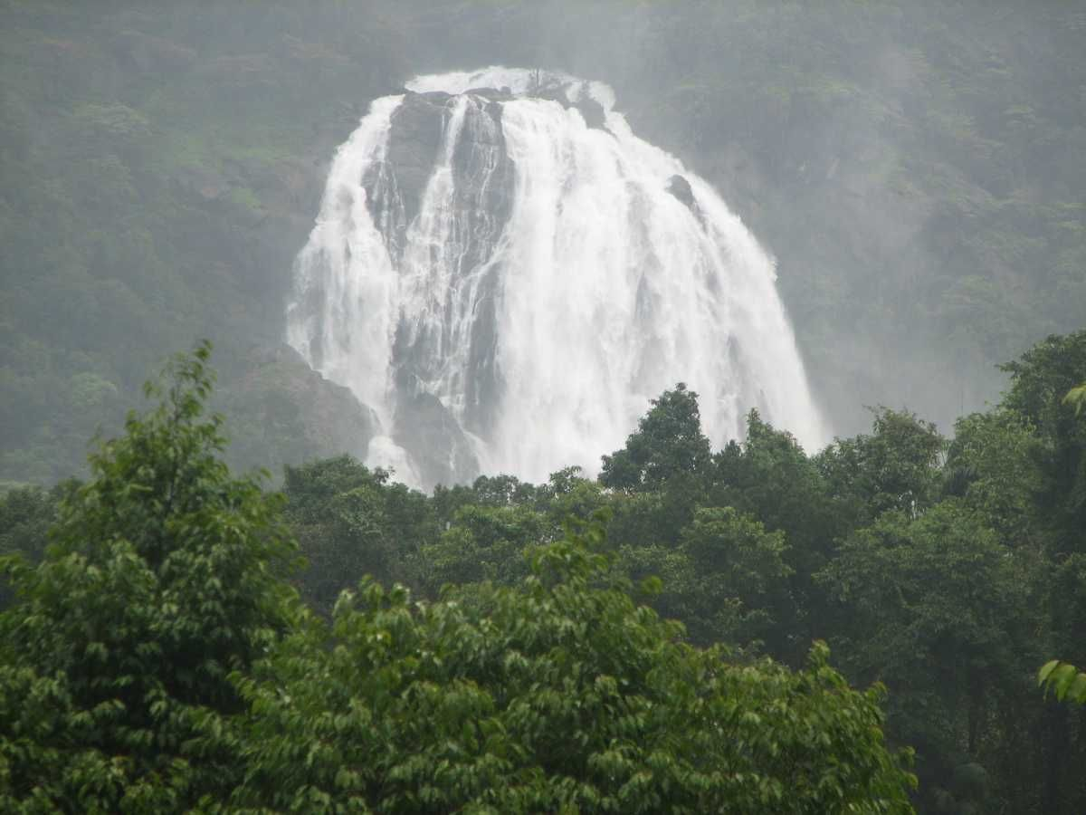 Dudhsagar-Waterfalls-Goa-India.jpg (1200×900)