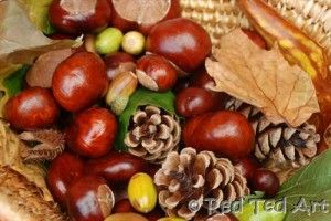 Awesome Kids Chesnut Crafts Perfect For Fall Nature Crafts Autumn Crafts Fall Crafts For Kids