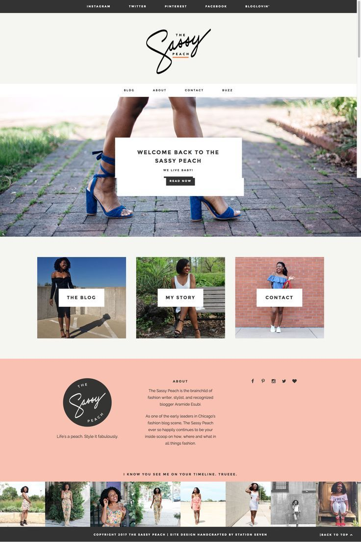 Monstera wordpress theme wordpress themes pinterest web design