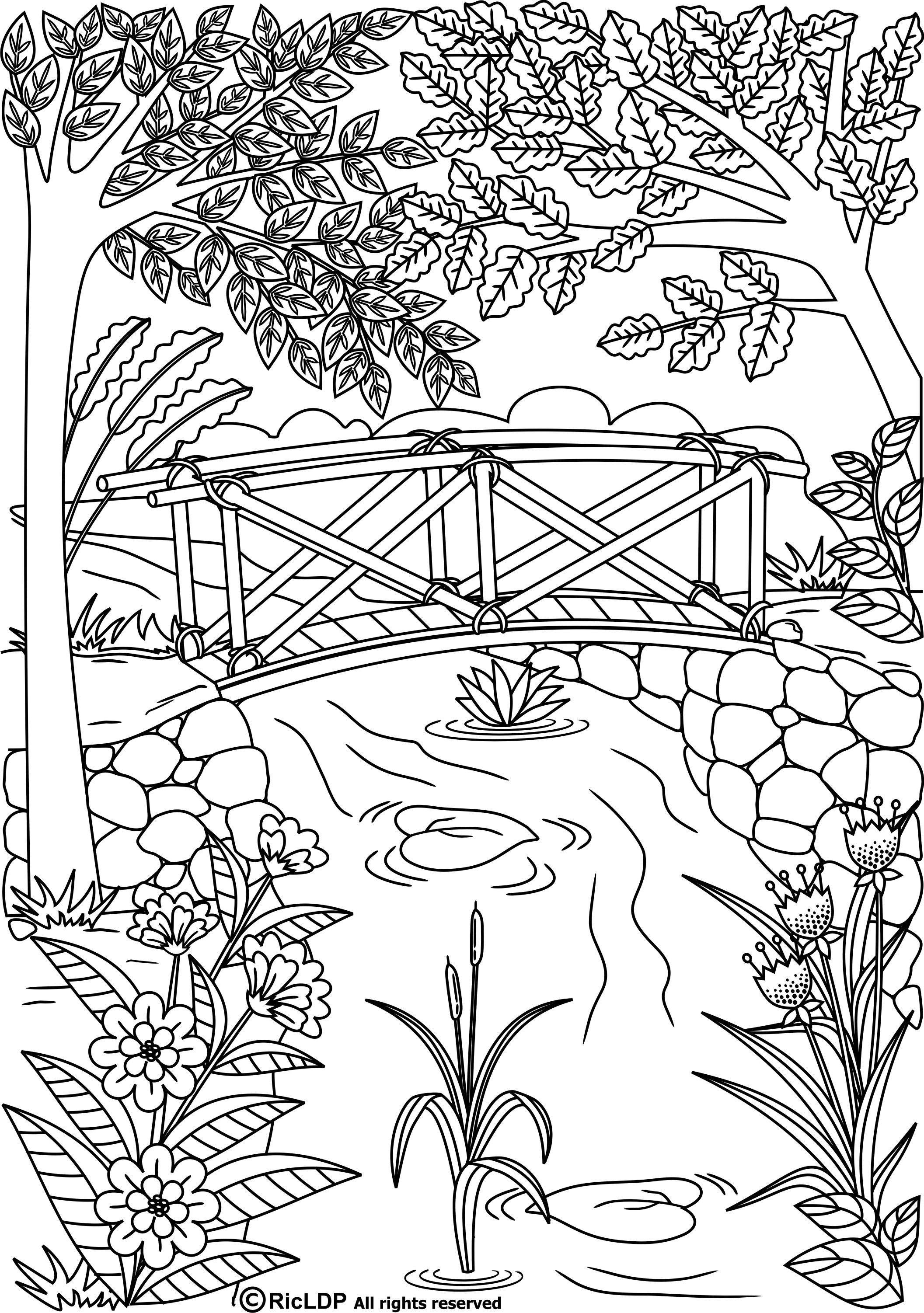 Resultado de imagen de dibujos para colorear adultos paisajes