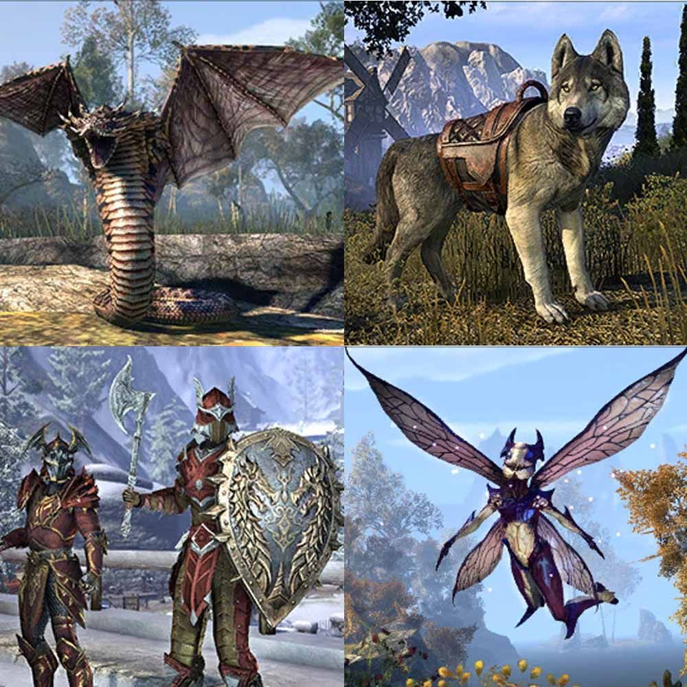 eso crown store 2 4 0 data mining crown store pinterest