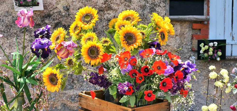 Wie Mohn Und Sonnenblumen Langer In Der Vase Halten Sonnenblumen Mohnblume Und Mohn