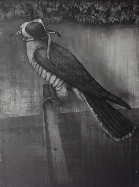 The Cuckoo Bird, 2012, by Dan Beudean