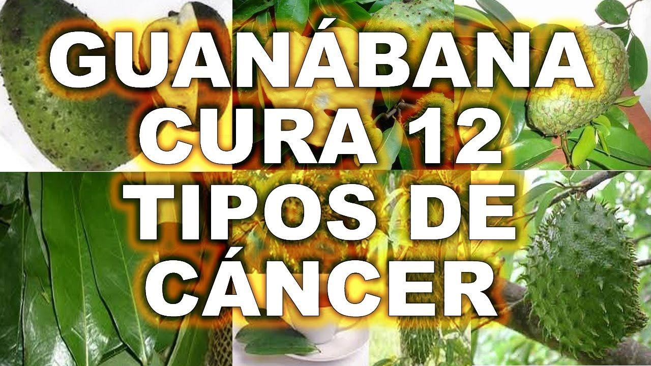 Té de hojas de guanábana, Contra el cancer