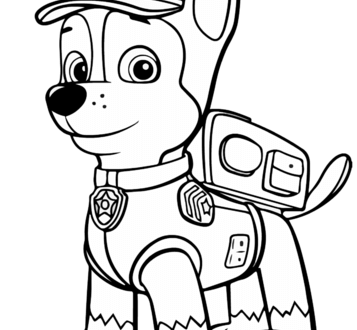 De Paw Patrol Delfin Color Y Coloring Pages