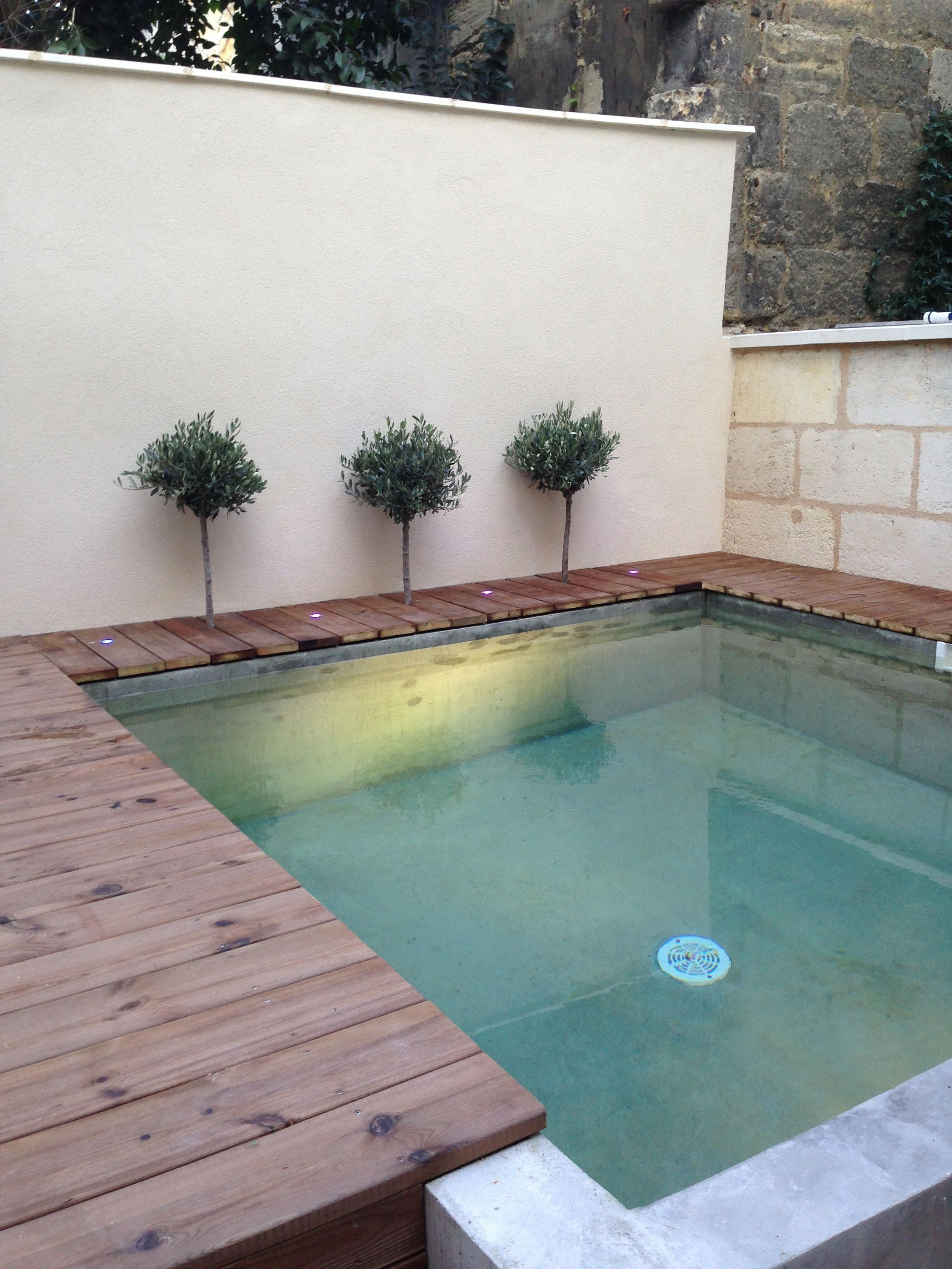 Determine More Details On Outdoor Patio Ideas Decorating Visit Our Internet Site Outdoorpatioideasde Small Backyard Pools Backyard Pool Small Pool Design