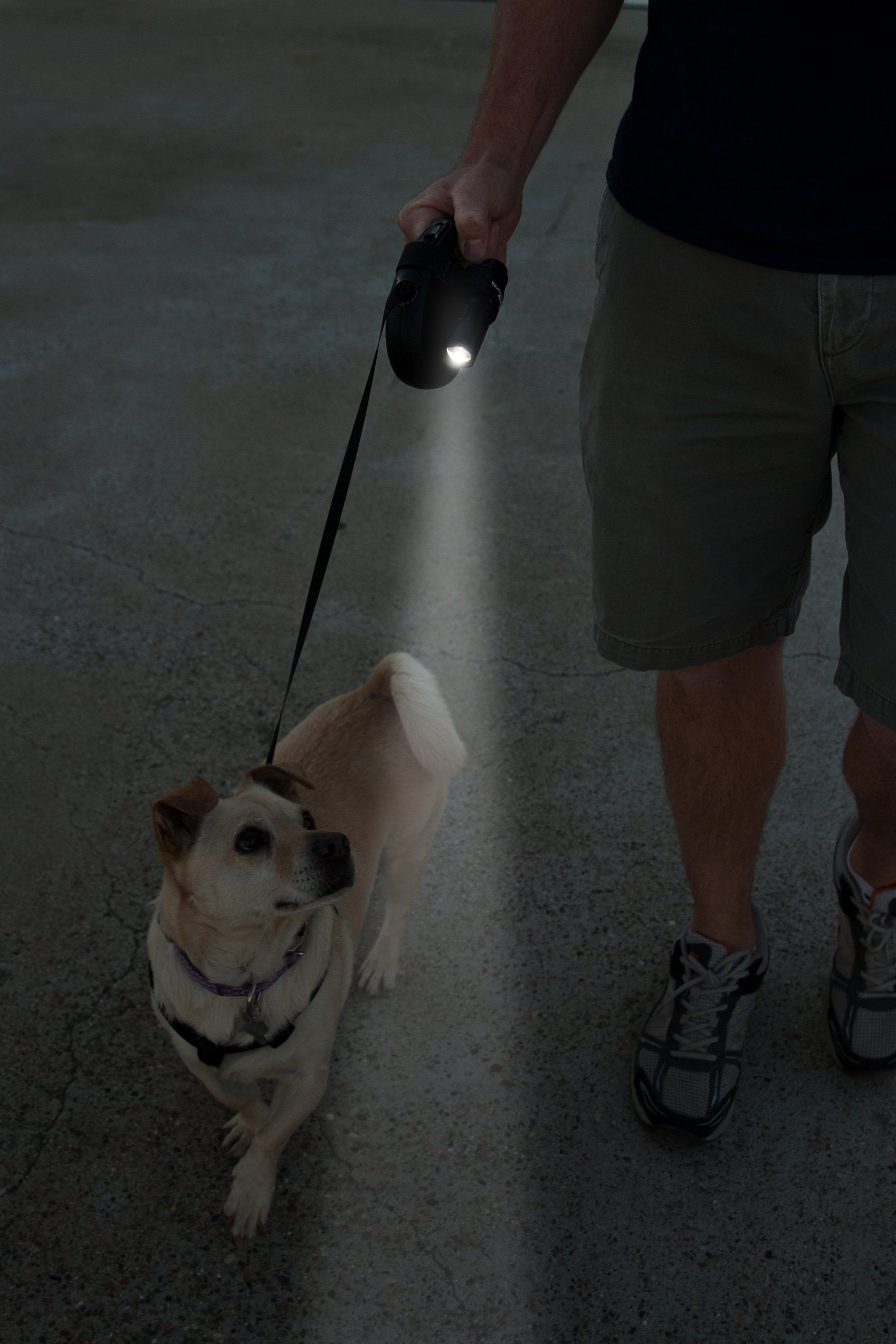 Life Mounts Led Leash Light With Patented Universal Mount Fits All