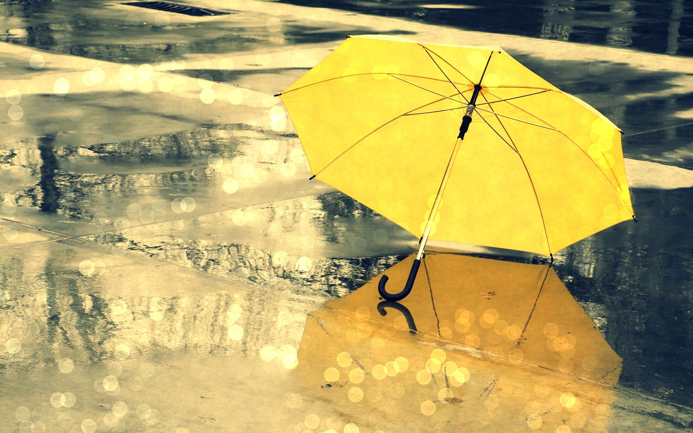 yellow umbrella rain nice