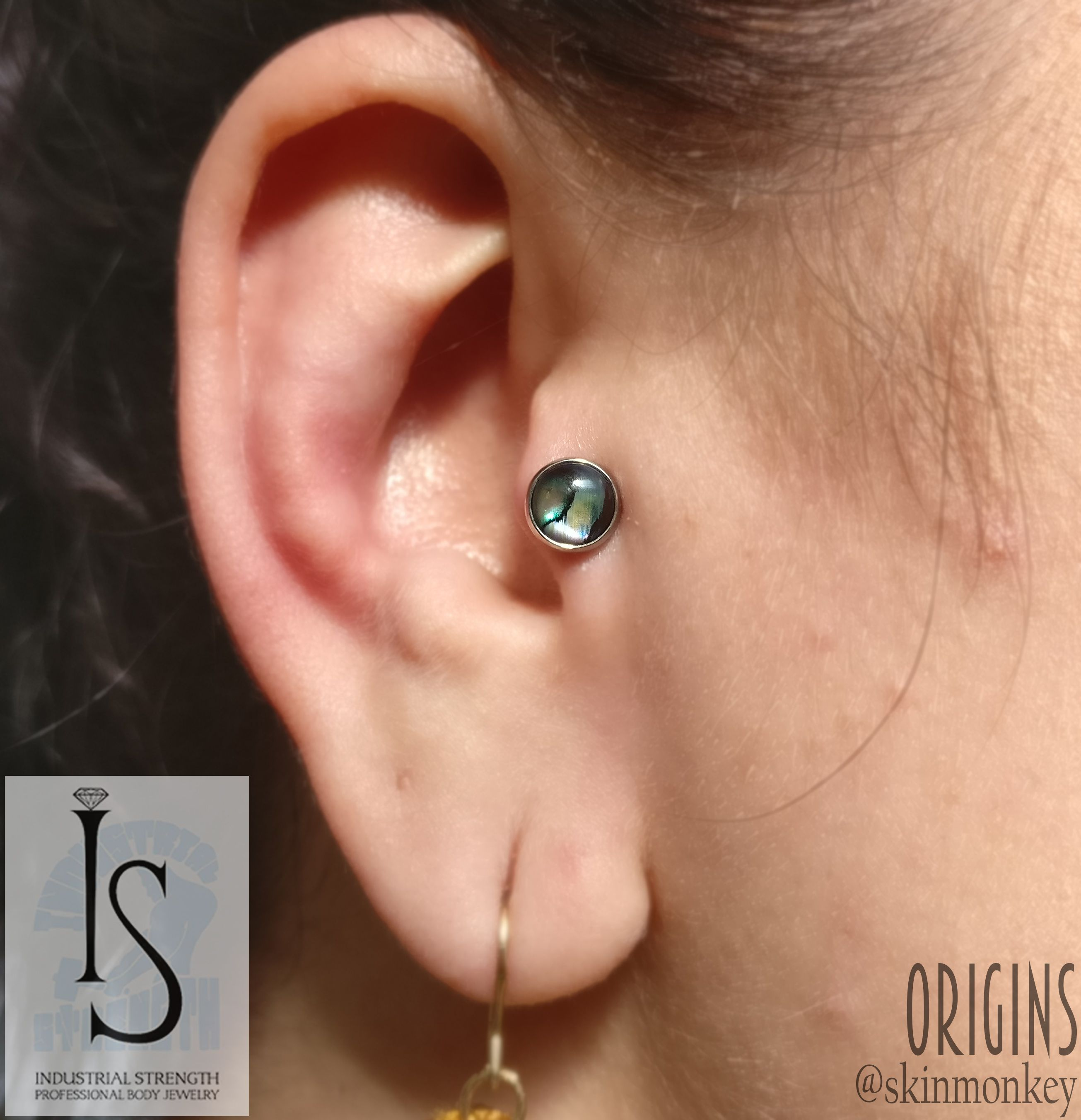 Healed nose piercing hole  Jewellery upgrade for this healed tragus piercing Jewellery