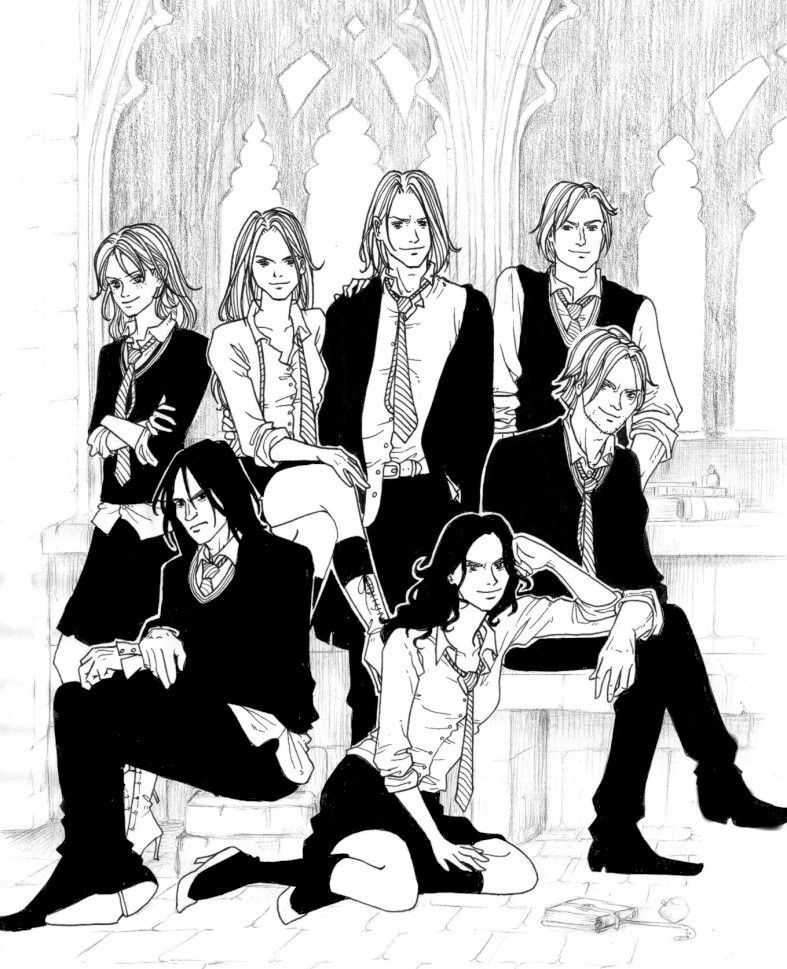 The Slytherin's at school in the Marauder's Era  Andromeda