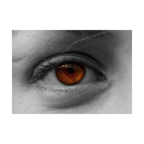 35 Breathtaking Pictures of Eyes ❤ liked on Polyvore featuring beauty products