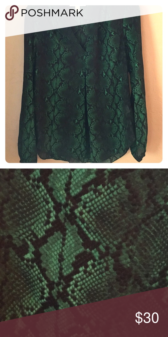 Michael KORS top This green and black Python top is flowy and breathable. The pleat in the center creates an incredibly slimming look. MICHAEL Michael Kors Tops Blouses